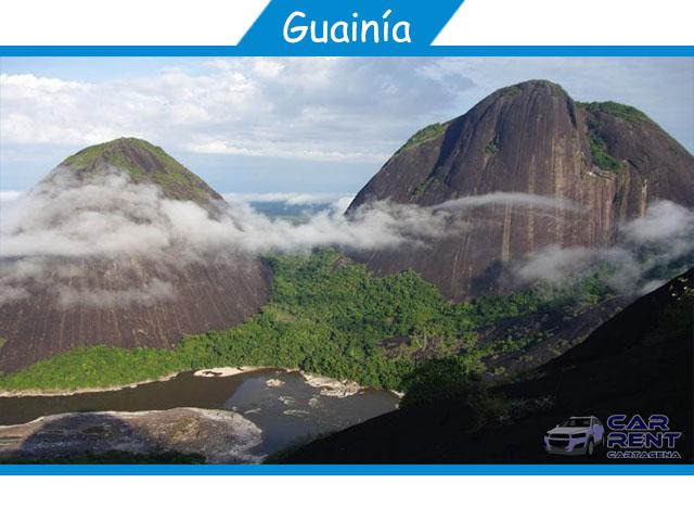 Guainia